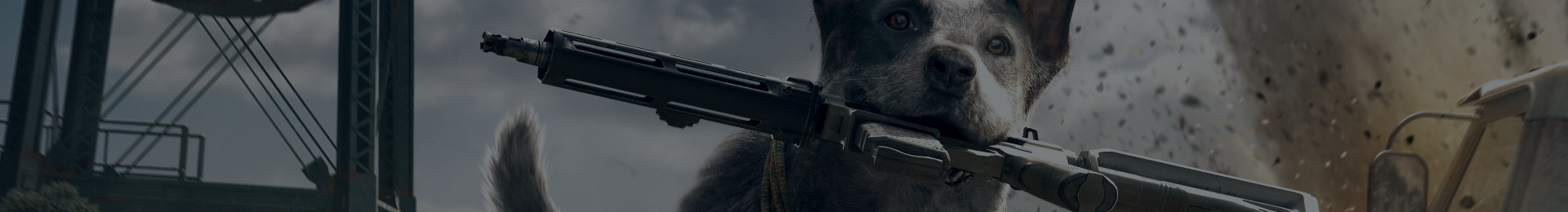 Let's talk about killing animals in video games